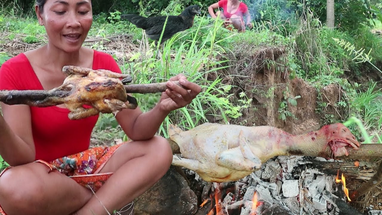 Survival skills: Finding chicken In the woods & grilled for food – Cooking chicken eating delicious